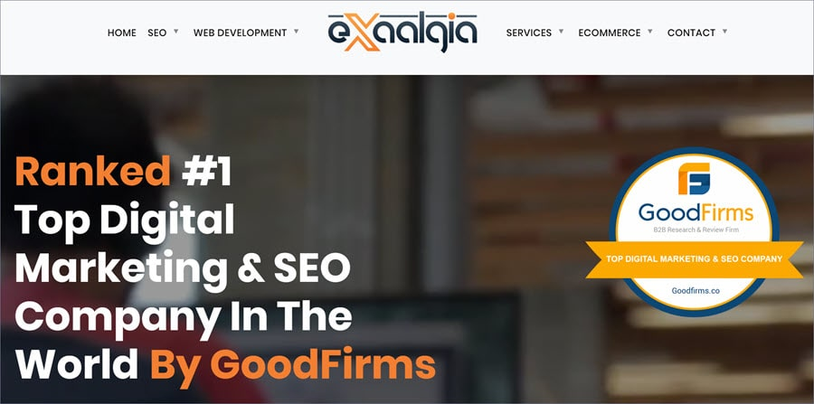 affordable seo services - Exaalgia