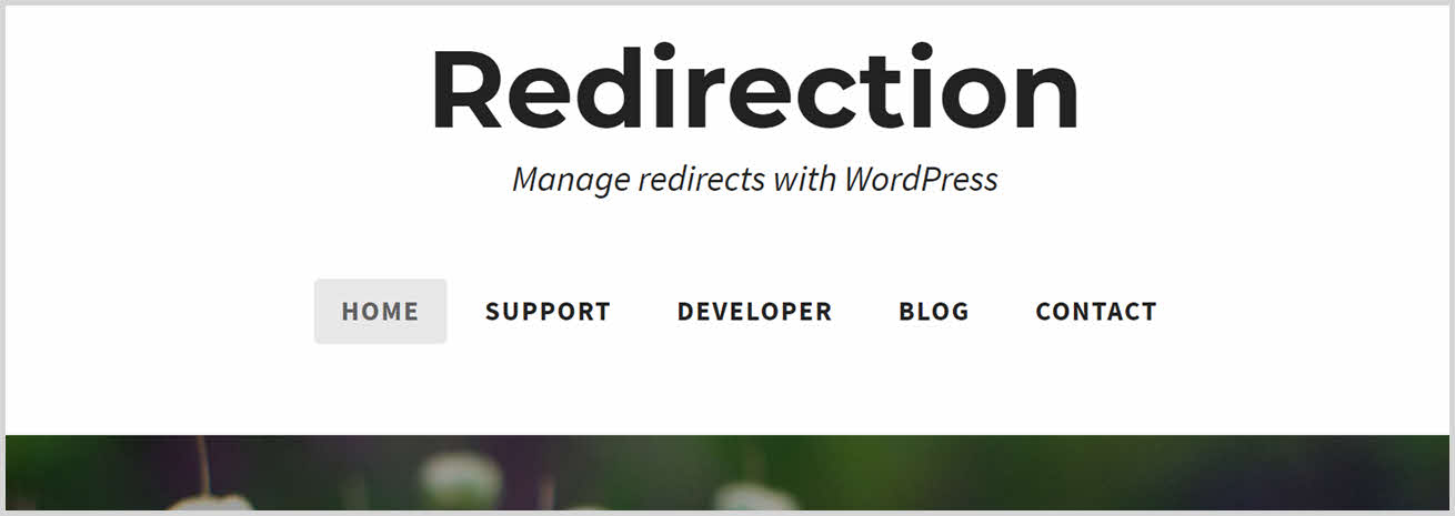 must have wordpress plugins - redirection